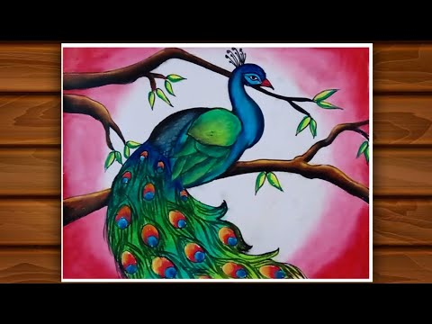 How to draw a Peacock / Beautiful Peacock drawing with beautiful Nature / Nature drawing beautiful