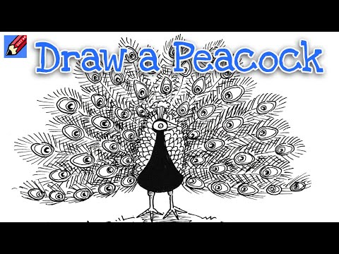 How to draw a peacock real easy step by step