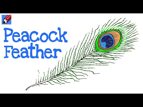 Draw a Peacock Feather Easy - Step by Step