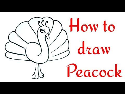 How to Draw a Peacock Step by Step in easy Method Drawing for Children Toddlers Learning