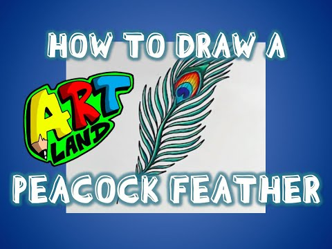 How to Draw a PEACOCK FEATHER