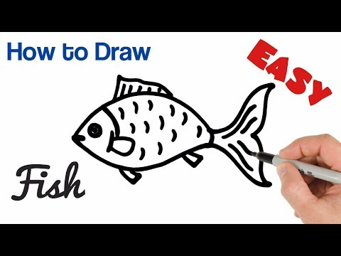 How to Draw a Fish easy step by step