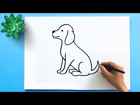 How to Draw a Dog Step by Step 🐕