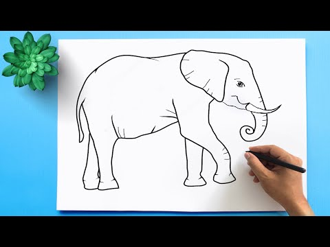 How to draw an elephant easy step by step 🐘