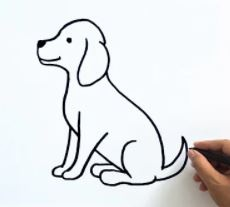 How to Draw a Dog Easy – 4 Different Ways