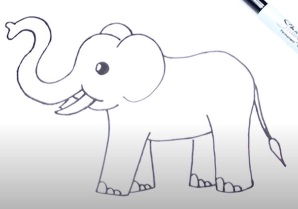 How to Draw an Easy Elephant Step by Step – 7 Different Ways