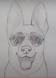 Easy German Shepherd Face Drawing with sunglasses