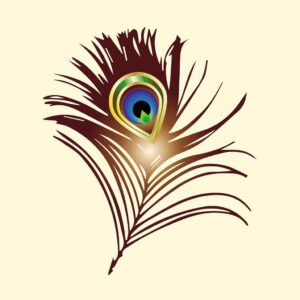Peacock brown feather drawing with color
