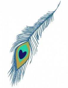Peacock feather in blue and green color