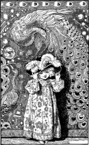 Peacock pencil drawing old