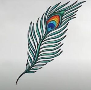 Simple peacock feather with color